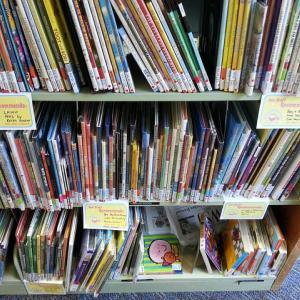 shelf of picture books
