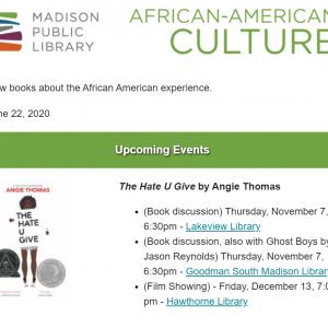 African American Culture newsletter screenshot