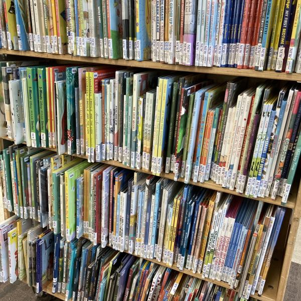 Shelves of new picture books