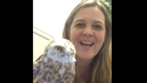 woman with an owl puppet