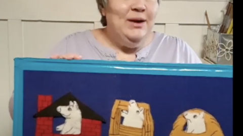 Librarian with pig flannel board