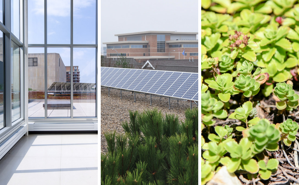 Solar panels at Central and Alicia Ashman Libraries, and green roof at Central